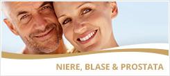 Niere, Blase & Prostata